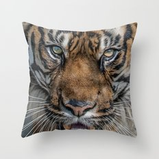 Tiger's Eyes Throw Pillow