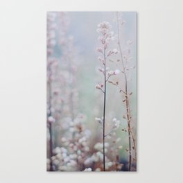 Flower Buds - III Canvas Print
