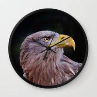 predator Wall Clocks featuring Predator by DistinctyDesign