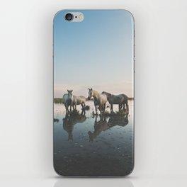 Camargue Horse II iPhone Skin