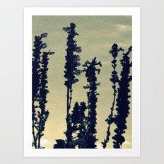 Paper Lavender Art Print