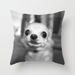 miss chihuahua Throw Pillow