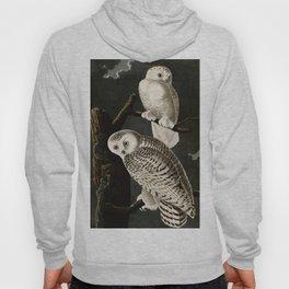 Snowy Owl Vintage Bird Illustration - Audubon Hoody