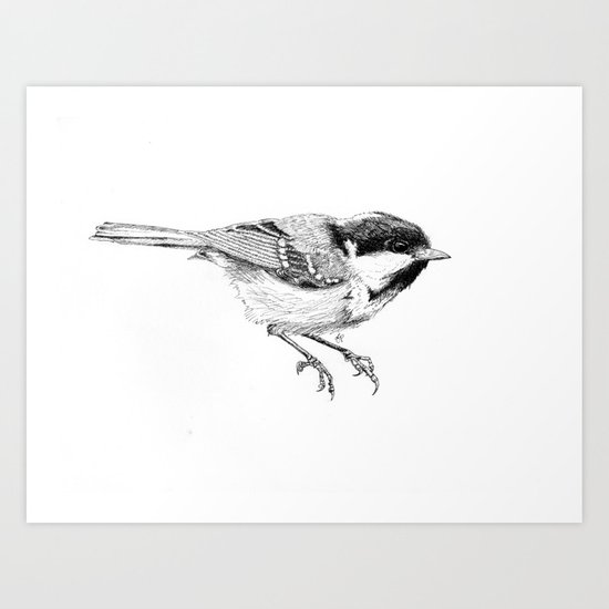 Coal Tit Art Print
