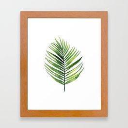 Palm Leaf. Framed Art Print