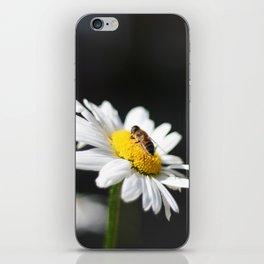 Little bee iPhone Skin