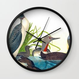Red-Throated Diver Duck Wall Clock