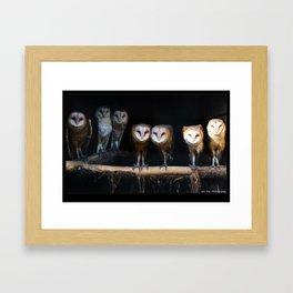 Owls the family Framed Art Print