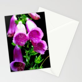 Flower Portrait Stationery Cards