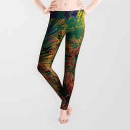 Singapore Bot. Garden 2 – Color Leggings
