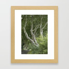 Dark Hedges, Northern Ireland Framed Art Print
