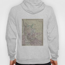 Vintage Map of Buffalo NY (1872) Hoody