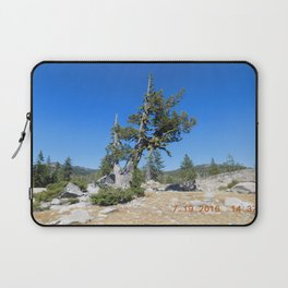 road trip, non typical tree, forked tree, back growth Laptop Sleeve