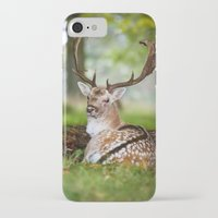 bambi iPhone & iPod Cases featuring Bambi  :)  by Ironia Art