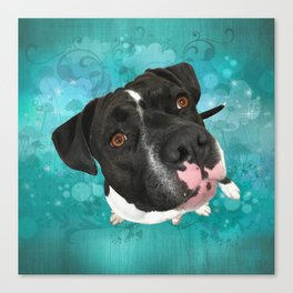 SMiTHY (shelter pup) Canvas Print