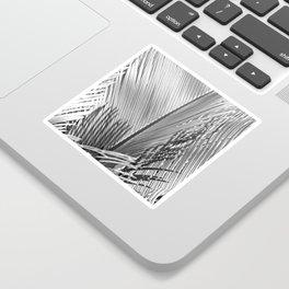 Palms Monochrome Sticker