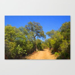 The Garrigue Trail Canvas Print