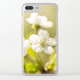 Beautiful cherry blossom on a vivid green background - summer atmosphere Clear iPhone Case