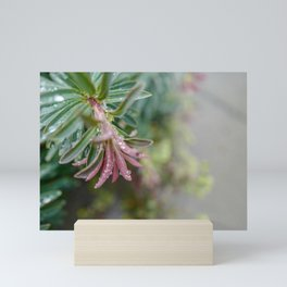 Pastels Floral Greenery Mini Art Print