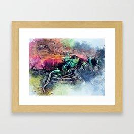Housfly Framed Art Print