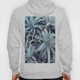 Succulents At Sunset Hoody