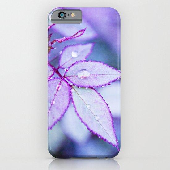 Lilac Rim iPhone & iPod Case