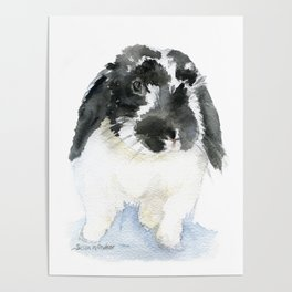 Black and White Bunny Rabbit Watercolor Poster