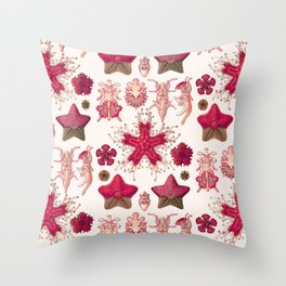 Ernst Haeckel - Scientific Illustration - Asteroidea (Red) Throw Pillow