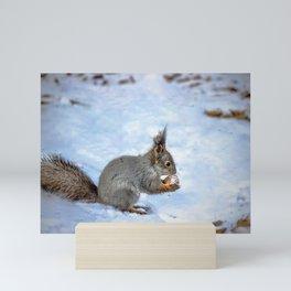Tasty nut Mini Art Print