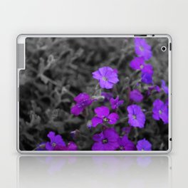 violets Laptop & iPad Skin