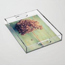 Autumnal Light no.2 Acrylic Tray
