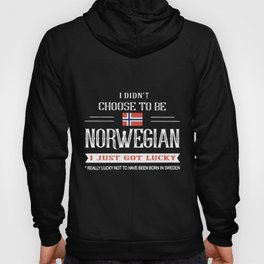 I didnt choose to be norwegian norway Hoody