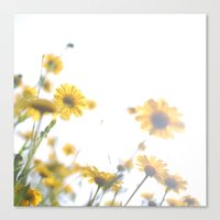 dazed and confused Canvas Prints featuring Dazed and Confused by Cassia Beck
