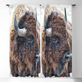 Bison the Mighty Beast Blackout Curtain