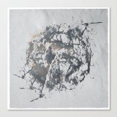 ferman 09 Canvas Print