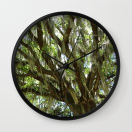 Live Oak in Springtime Wall Clock