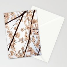 Spring Skies Stationery Cards