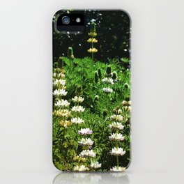 Lupine Garden iPhone Case