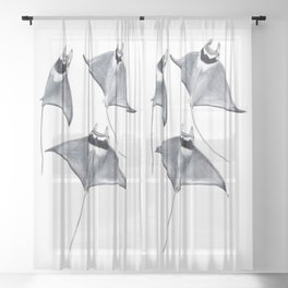 Devil fish Manta ray Mobula mobular Sheer Curtain