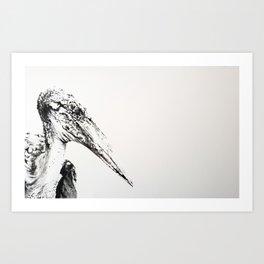 Senor Pelican Art Print