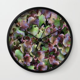 Red Leaf Lettuce Wall Clock