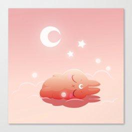 Hisi is sleeping Canvas Print