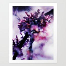 052214 Art Print