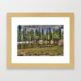Reflecting Pond at Carson Spur, Amador County CA Framed Art Print