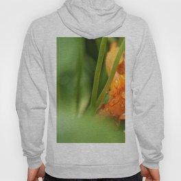Raindrops on an Orange Flower Hoody