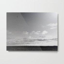 Icelandic Flyer 04 Metal Print