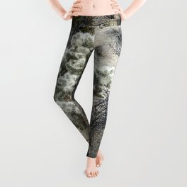 Joshua Tree National Park Leggings