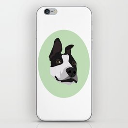 Silly Pitbull iPhone Skin