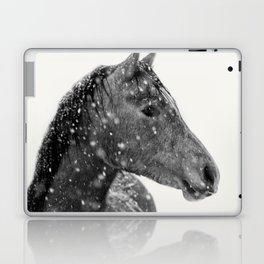 Horse Animal Photography Laptop & iPad Skin