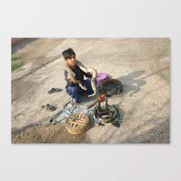 Snake shadows Canvas Print
